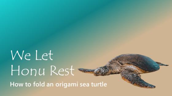 A Shellebration of Turtley Amazing Origami Turtles and Tortoises | 315x560